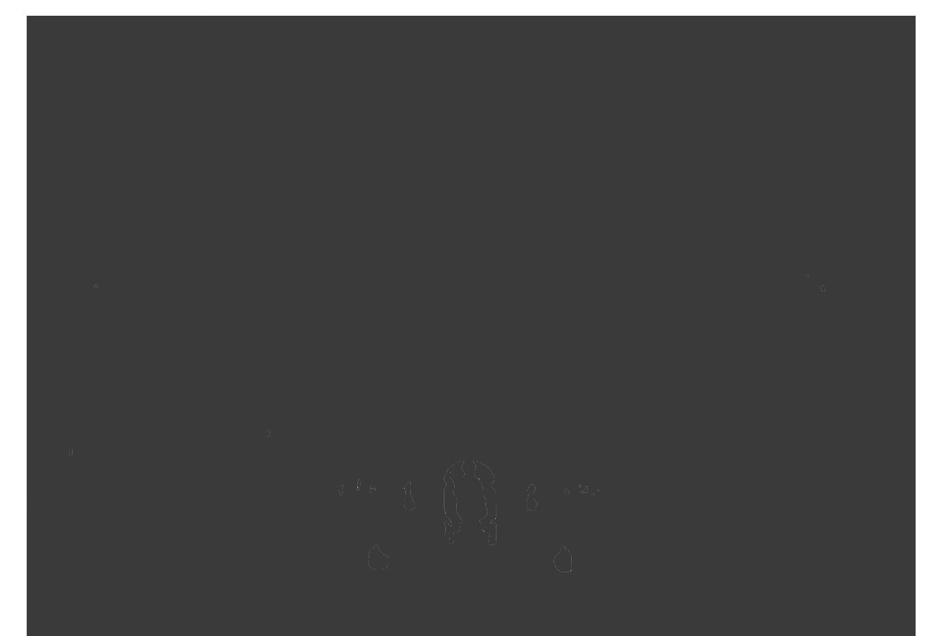 camino-das-estelas-silueta-catedral-footer